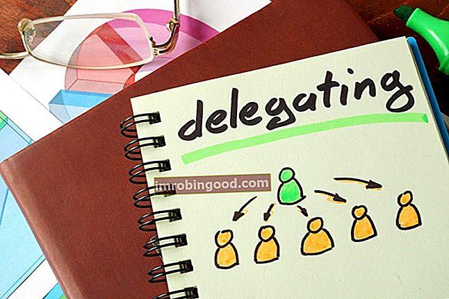 Co je to delegování?