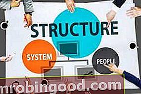 Mikä on yrityksen rakenne?