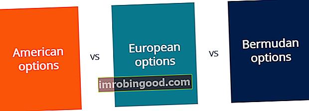 Шта су америчке и европске против бермудских опција?