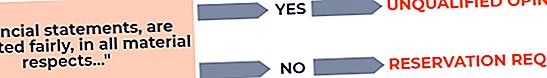 Jaké jsou typy výroků auditorů?
