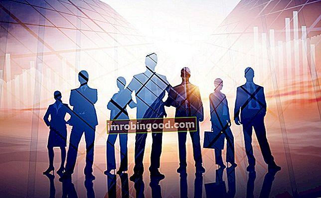 Jaké jsou různé typy organizací?