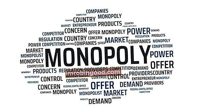 Mitä ovat lailliset monopolit?