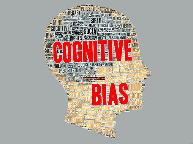 Co je kognitivní zkreslení?