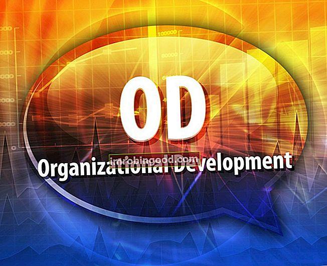 Co je organizační rozvoj?