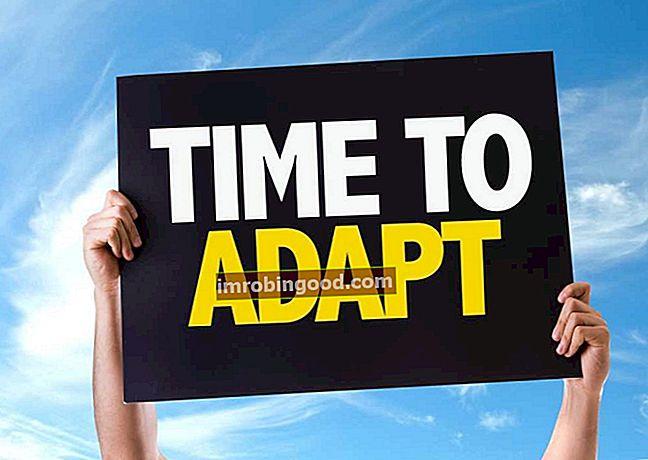 Mikä on adaptiivinen johtajuus?