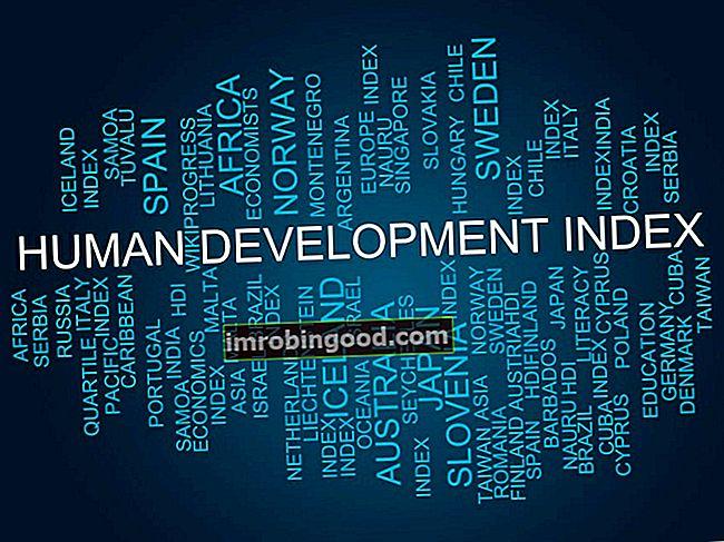 Co je index lidského rozvoje (HDI)?
